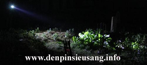 Đèn pin siêu sáng Inox Cree SD32 800lm